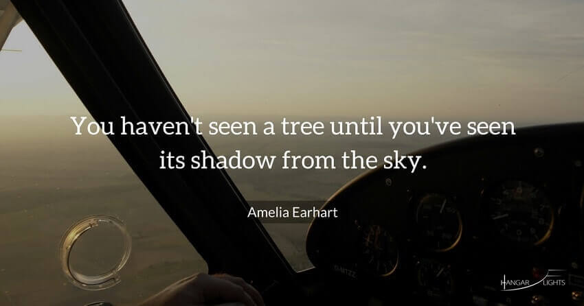 Amelia Earhart aviation quote - You haven't seen a tree until you've seen its shadow from the sky.